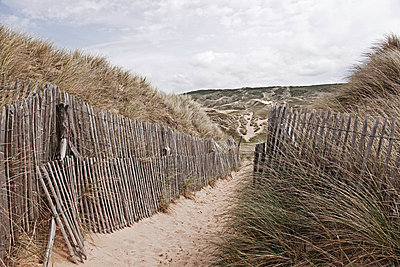 sand path in the dunes - p4163399 by Manuel Wagner