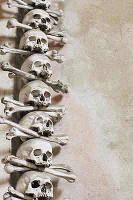 Skulls and bones - p1670m2253293 by HANNAH