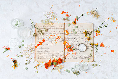 Dried medical plants and globuli on old recipe book - p300m1469933 by Mandy Reschke
