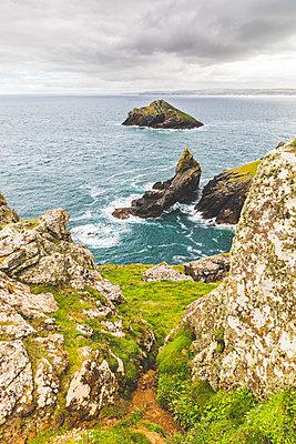 United Kingdom, Cornwall, coastal area The Rumps - p300m2003988 by William Perugini