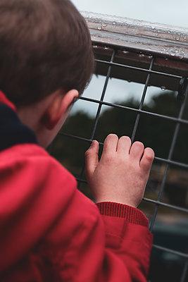 Little boy looking out from a railway bridge - p1228m2258590 by Benjamin Harte