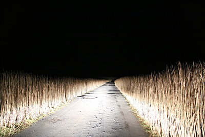 Road at night  - p1289m1556693 by Elisabeth Blanchet