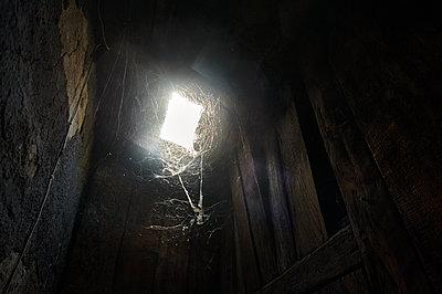 Dachboden mit Spinnweben - p491m1132557 von Ernesto Timor