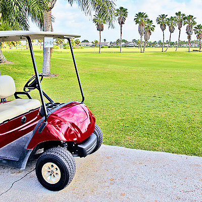 Golf buggy with palm trees on golf course. - p1100m2241868 by Mint Images
