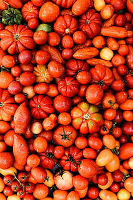 Overhead view of fresh red tomatoes on table - p1166m2095482 by Cavan Images