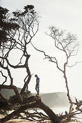 Young man stands on fallen tree at the seaside - p1477m1586665 by rainandsalt