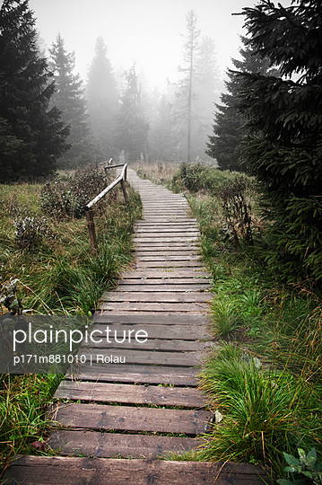 Wooden track - p171m881010 by Rolau