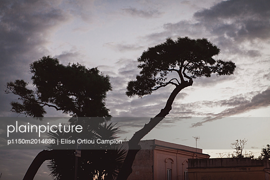 Sonnenuntergang - p1150m2014696 von Elise Ortiou Campion