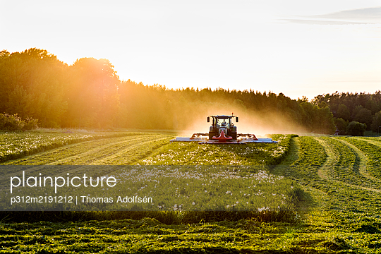 Tractor mowing grass - p312m2191212 by Thomas Adolfsén