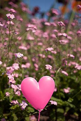 Flower farm - p045m1154722 by Jasmin Sander