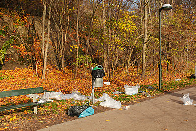 High angle view of plastic waste littered by bench in park during autumn - p426m2213272 by Maskot