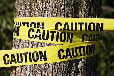 Caution tape wrapped around tree - p4423057f by Design Pics