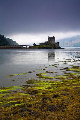 Scottish - p3432969 by Joel Santos