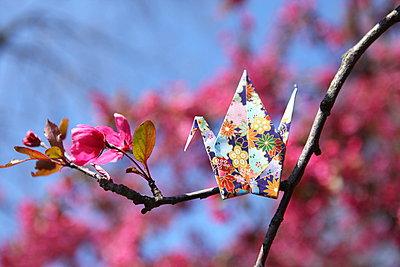 Origami Vogel auf Zweig - p045m901652 von Jasmin Sander