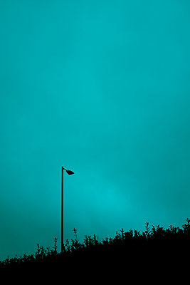 Street lamp against a blue sky - p1228m2157904 by Benjamin Harte