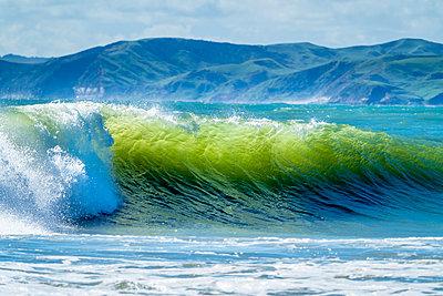 New Zealand, North Island, Raglan, Ngarunui Beach, Manu Bay, breaking wave - p300m1460428 by Stefan Schurr