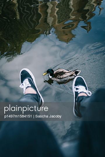 Ente schwimmt zwischen den Füßen hindurch - p1497m1584151 von Sascha Jacoby