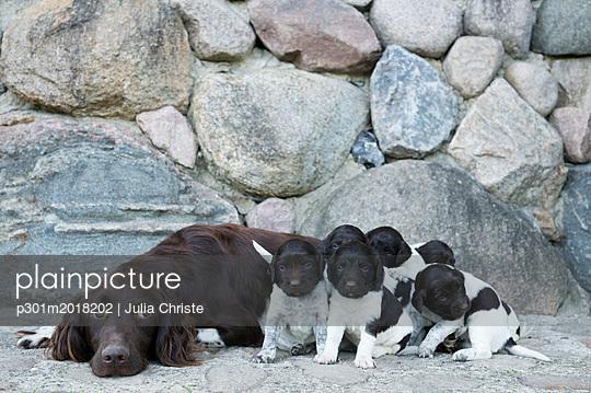 p301m2018202 von Julia Christe