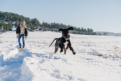 Playful Great Dane dog running while having fun with male owner in snow on sunny day - p300m2250979 by Eva Blanco