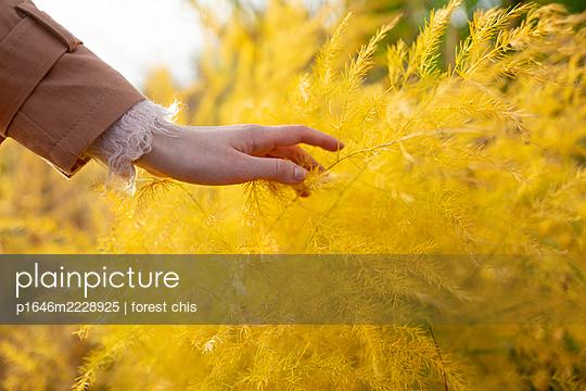 Frau mit gelben Gräsern - p1646m2228925 von Slava Chistyakov