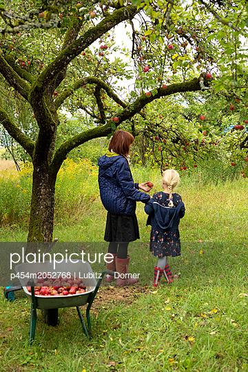 In Omas Garten - p454m2052768 von Lubitz + Dorner