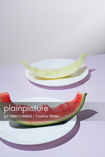 Leftovers of melons - p1149m1146842 by Yvonne Röder