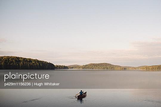 p429m1156236 von Hugh Whitaker