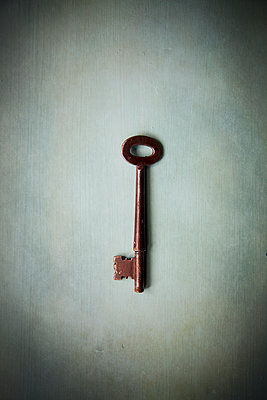 Old lron Key - p1248m1492066 by miguel sobreira