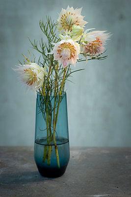 Miniprotea Blüten in blauer Vase mit Unschärfe. - p948m2134086 von Sibylle Pietrek