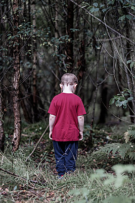 Alone in the woods - p1228m2215104 by Benjamin Harte