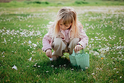 Cute girl in field with basket picking flower petal, Arezzo, Tuscany, Italy - p429m2098474 by Senserini Lucrezia