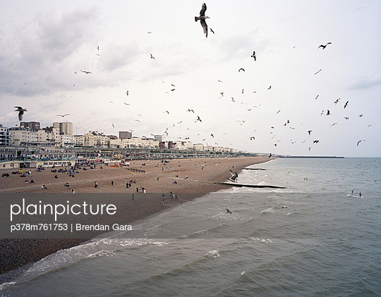 Seagulls flying over beach - p378m761753 by Brendan Gara