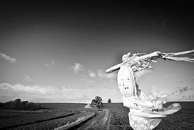 Spooky - p1245m1043427 by Catherine Minala