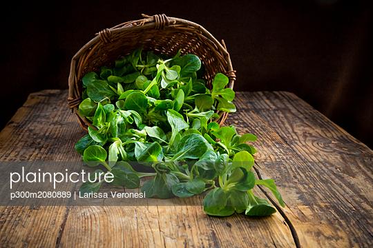 Lamb's lettuce in wickerbasket - p300m2080889 by Larissa Veronesi