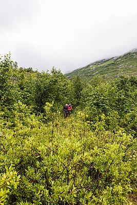 Norwegen Urlaub - p1257m1203033 von Jozef Kubica