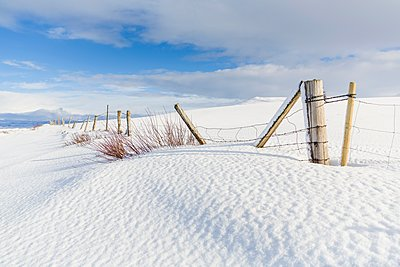 Leaning fence in snow covered empty landscape, Myvatn, Iceland - p429m1148757 by Oscar Bjarnason
