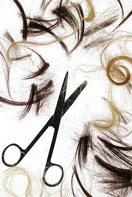 Cut hair - p450m2259001 by Hanka Steidle