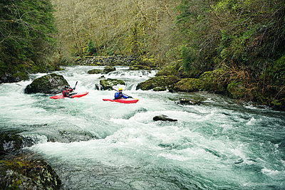 Kayakers paddling through river in forest - p1166m1534047 by Cavan Images