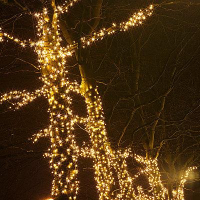Weihnachtsbeleuchtung - p6060669 von Iris Friedrich