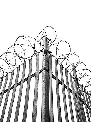 Security fence with razor wire - p1280m2028314 by Dave Wall