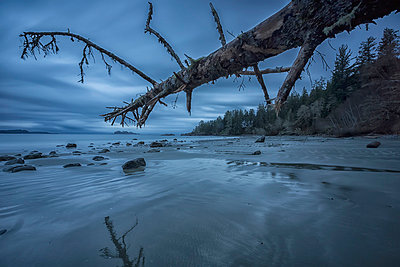 Six minute exposure of the clouds and ocean and a log florencia beach pacific rim national park;British columbia canada - p442m804921f by Robert Postma