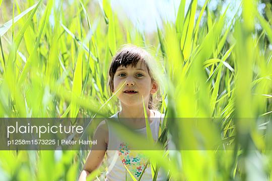Kleines Mädchen im Schilf - p1258m1573225 von Peter Hamel
