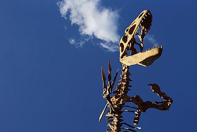 Dinosaur - p1063m953950 by Ekaterina Vasilyeva