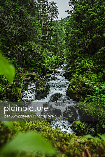 Alaska, Wild river in the forest - p1455m2204461 by Ingmar Wein