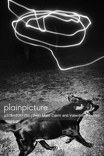 p378m2061757 von Jean-Marc Caimi and Valentina Piccinni