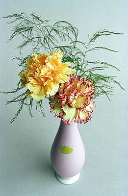 Vase of flowers - p1650023 by Andrea Schoenrock