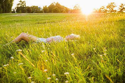 In der Natur - p904m1170856 von Stefanie Päffgen