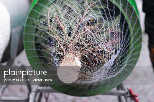 p312m1471061 von Viktor Holm