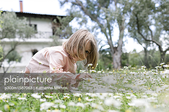 Little girl picking flowers on meadow - p300m1587063 von Katharina Mikhrin