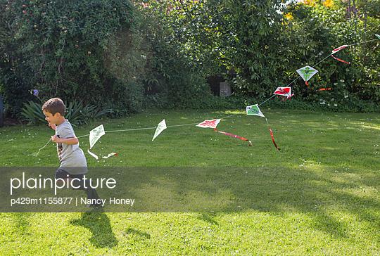 p429m1155877 von Nancy Honey